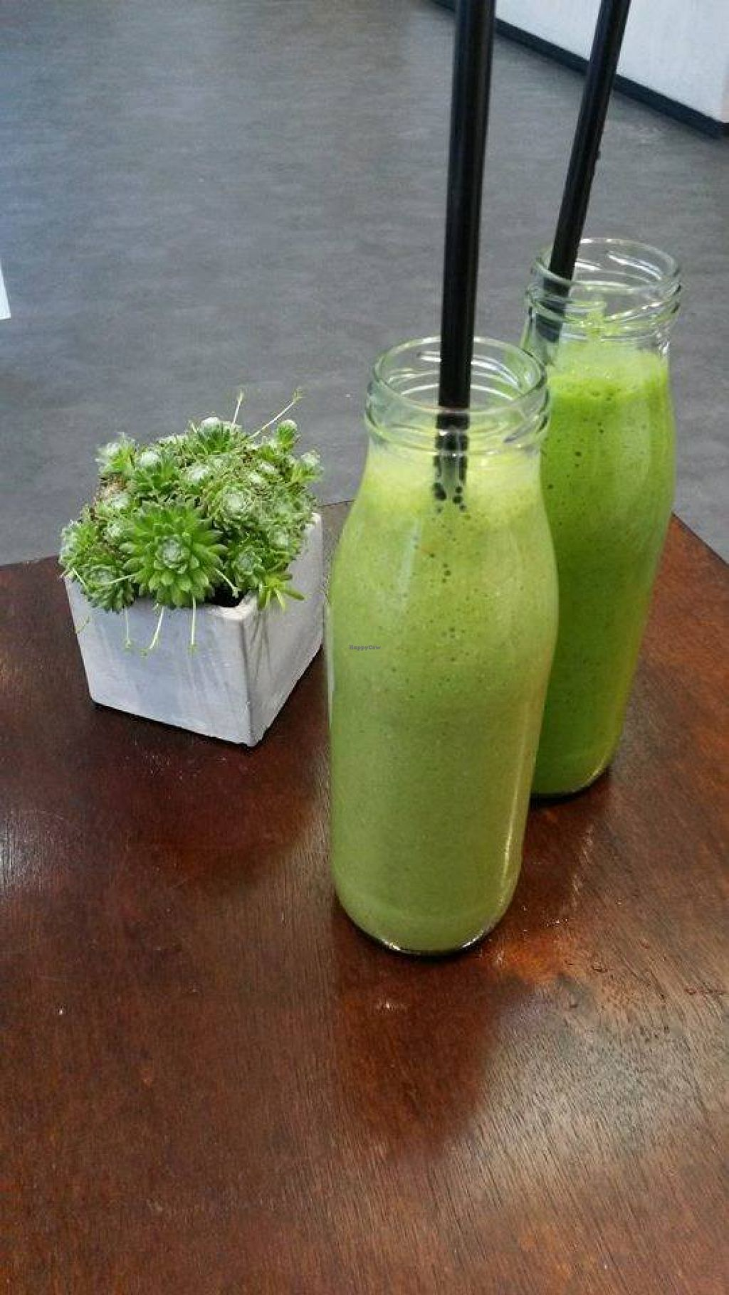 "Photo of Unter Freunden  by <a href=""/members/profile/LenaEmrich"">LenaEmrich</a> <br/>grüne Smoothies <br/> July 29, 2015  - <a href='/contact/abuse/image/58535/111459'>Report</a>"