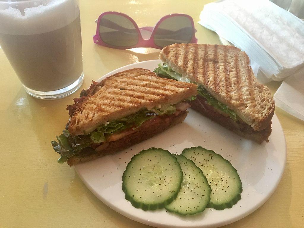 "Photo of Café Tuyo  by <a href=""/members/profile/AliceBernier"">AliceBernier</a> <br/>Vege sandwich  <br/> August 20, 2017  - <a href='/contact/abuse/image/58596/294792'>Report</a>"