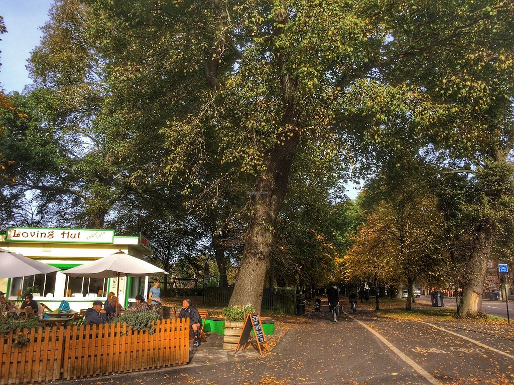 """Photo of Loving Hut Cafe - St Peter's Place  by <a href=""""/members/profile/Edible%20Journey"""">Edible Journey</a> <br/>The Loving Hut, The Level, Brighton <br/> October 26, 2015  - <a href='/contact/abuse/image/58717/122719'>Report</a>"""
