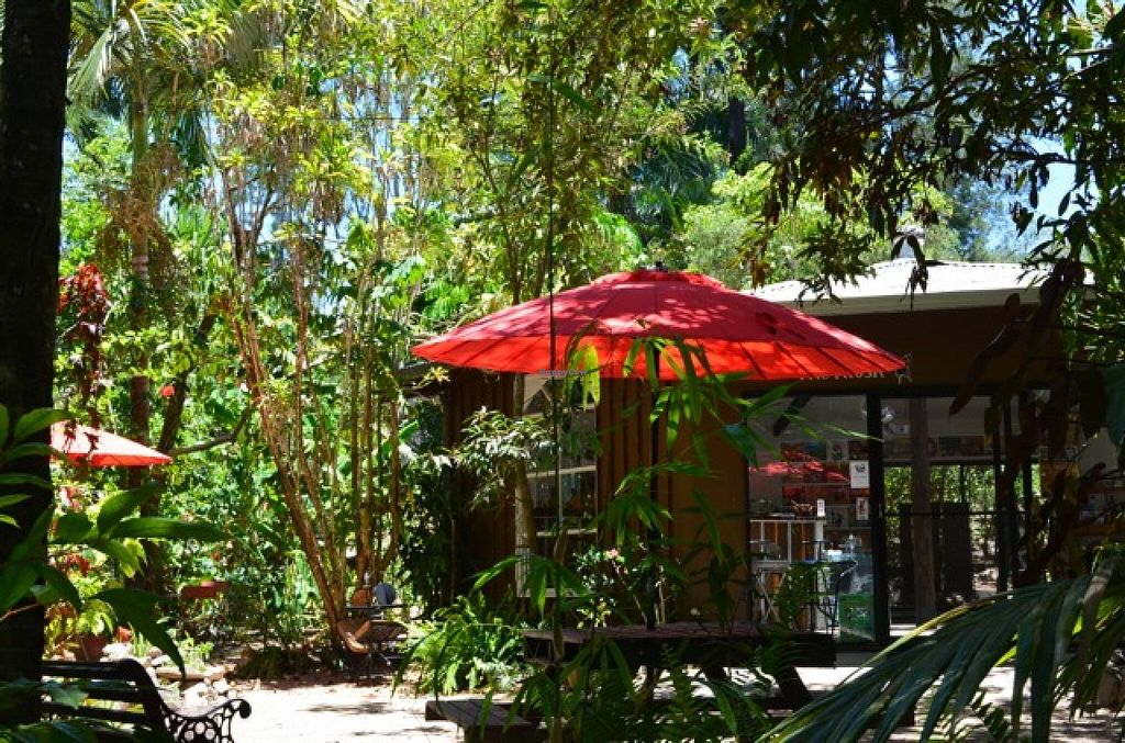 Photo of Ulysses Garden Cafe  by UlyssesGardenCafe <br/>Alfresco dining in a rainforest setting <br/> May 24, 2015  - <a href='/contact/abuse/image/58753/103294'>Report</a>