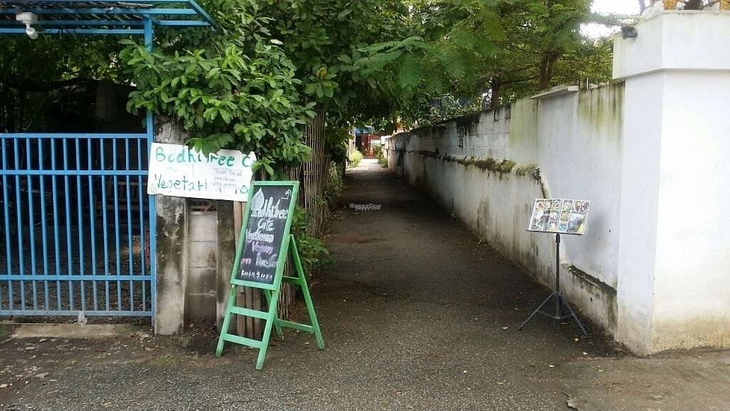 """Photo of CLOSED: Bodhi Tree Cafe  by <a href=""""/members/profile/Mike%20Munsie"""">Mike Munsie</a> <br/>lane from Soi 4 to Bodhi Tree <br/> November 12, 2016  - <a href='/contact/abuse/image/58775/188884'>Report</a>"""