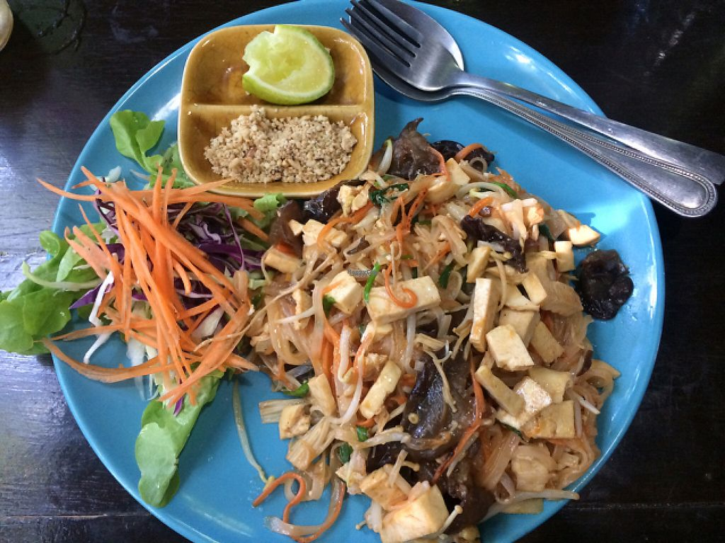 """Photo of CLOSED: Bodhi Tree Cafe  by <a href=""""/members/profile/FatTonyBMX"""">FatTonyBMX</a> <br/>Pad Thai <br/> January 15, 2017  - <a href='/contact/abuse/image/58775/212102'>Report</a>"""
