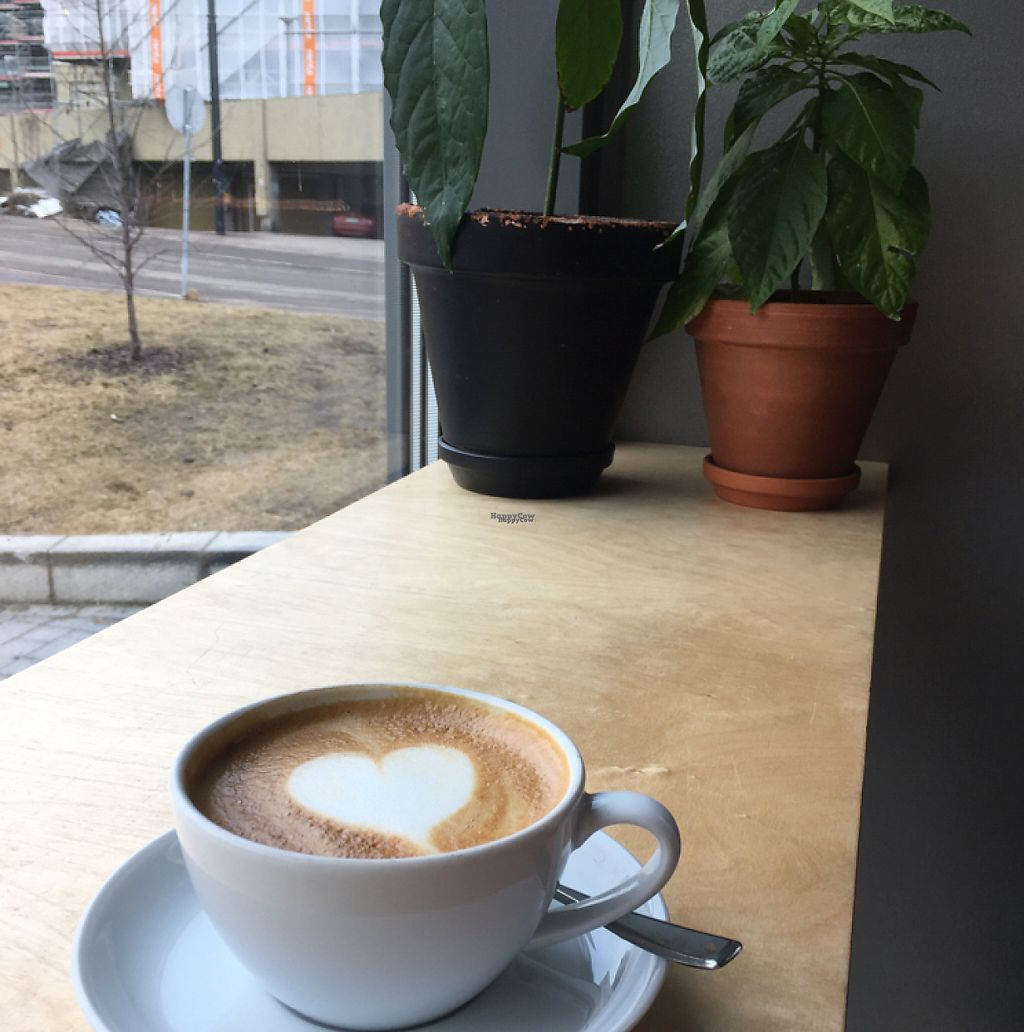"Photo of Cargo Coffee and Kitchen  by <a href=""/members/profile/Mmmmathilda"">Mmmmathilda</a> <br/>oat milk cappuccino  <br/> March 22, 2017  - <a href='/contact/abuse/image/58802/239444'>Report</a>"