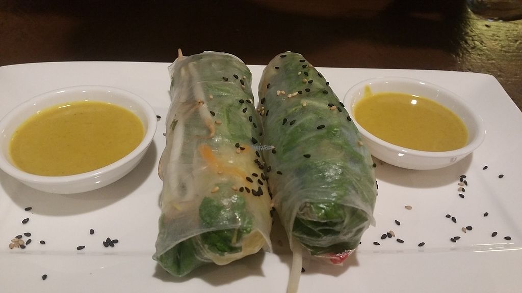 "Photo of Velvet Leaf  by <a href=""/members/profile/Rosa%20veg"">Rosa veg</a> <br/>Vietnamese spring rolls  <br/> April 28, 2017  - <a href='/contact/abuse/image/58841/253415'>Report</a>"