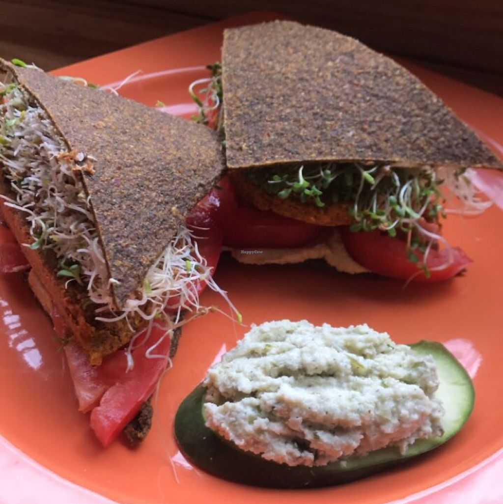 """Photo of Helio Terra Vegan Cafe  by <a href=""""/members/profile/BobbyDaniel"""">BobbyDaniel</a> <br/>sweet potato sage burger  <br/> May 30, 2017  - <a href='/contact/abuse/image/58848/264332'>Report</a>"""