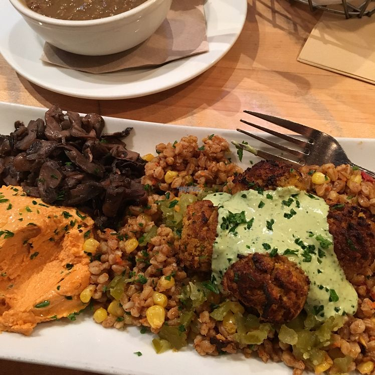 """Photo of Nanoosh  by <a href=""""/members/profile/Pure"""">Pure</a> <br/>Farro w/falafel, mushrooms & roasted red pepper hummus <br/> September 9, 2016  - <a href='/contact/abuse/image/58978/174445'>Report</a>"""