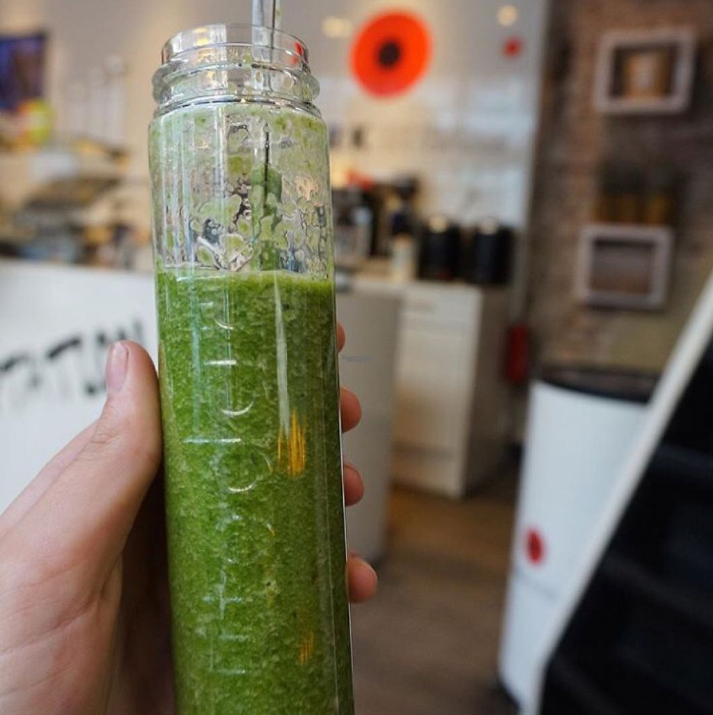 """Photo of Litedark Urbanfood  by <a href=""""/members/profile/AmyHuntt"""">AmyHuntt</a> <br/>spinach and mint smoothie  <br/> December 3, 2016  - <a href='/contact/abuse/image/59067/197087'>Report</a>"""