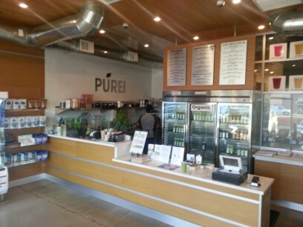 "Photo of Pure Green Juice  by <a href=""/members/profile/eric"">eric</a> <br/>inside <br/> February 7, 2016  - <a href='/contact/abuse/image/59139/135388'>Report</a>"