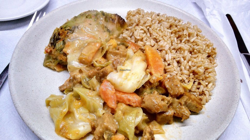 """Photo of Salpicos Verdes  by <a href=""""/members/profile/Anticopy"""">Anticopy</a> <br/>brown rice with seitan+veggies mix in peanut sauce and cabbage rolls with spinach and chickpea filling <br/> June 18, 2017  - <a href='/contact/abuse/image/59143/270441'>Report</a>"""