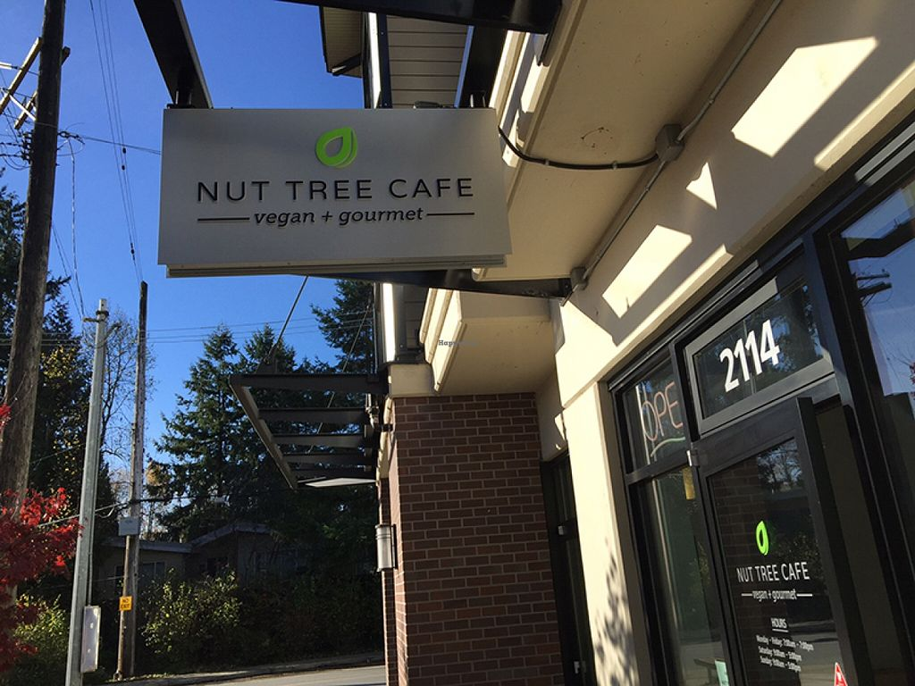 "Photo of CLOSED: Nut Tree Cafe  by <a href=""/members/profile/Wheat-free%20Vegan"">Wheat-free Vegan</a> <br/>Nut Tree Cafe <br/> November 13, 2015  - <a href='/contact/abuse/image/59169/124895'>Report</a>"