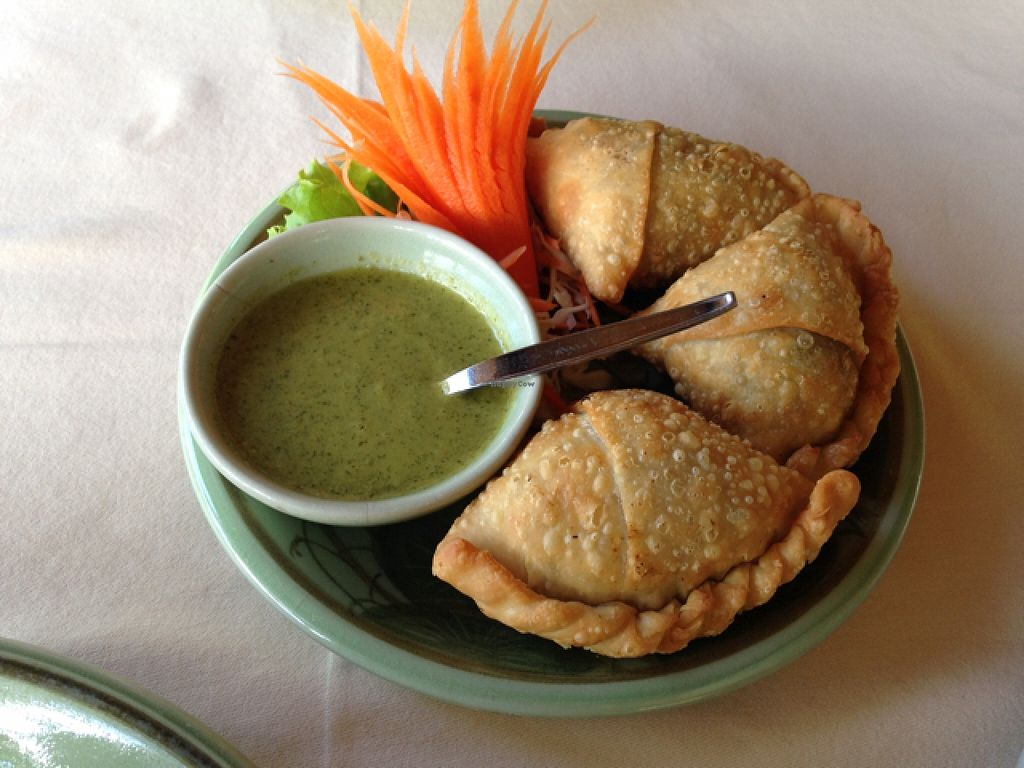 """Photo of The Whole Earth  by <a href=""""/members/profile/VeganEllise"""">VeganEllise</a> <br/>vegan samosa  <br/> December 14, 2015  - <a href='/contact/abuse/image/5919/128409'>Report</a>"""