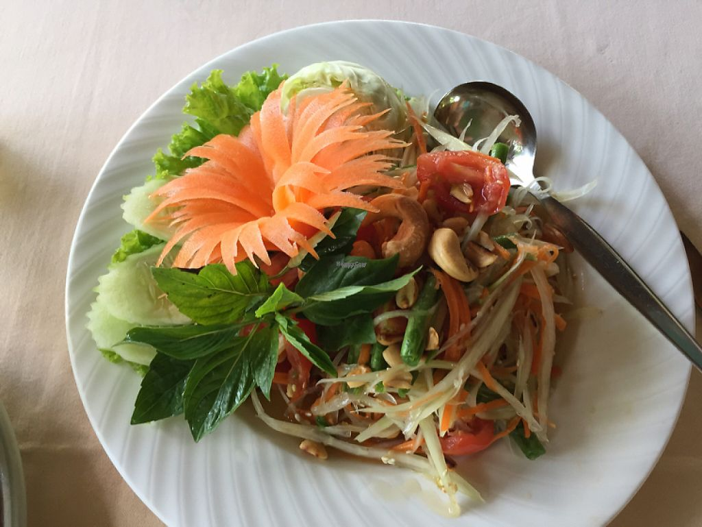 """Photo of The Whole Earth  by <a href=""""/members/profile/nlukas51"""">nlukas51</a> <br/>Green Papaya salad <br/> January 21, 2017  - <a href='/contact/abuse/image/5919/213794'>Report</a>"""