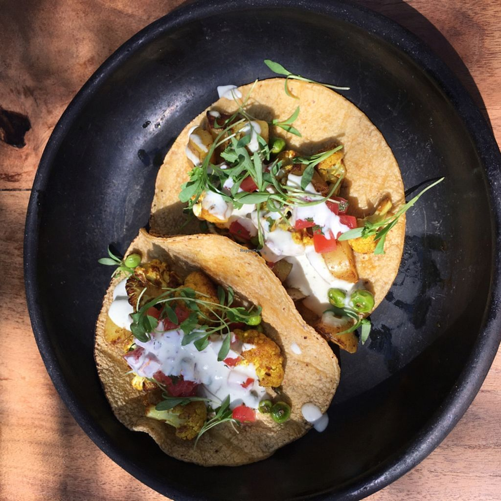 """Photo of Plant Food and Wine  by <a href=""""/members/profile/Alinta"""">Alinta</a> <br/>cauliflower tacos <br/> March 27, 2016  - <a href='/contact/abuse/image/59229/141476'>Report</a>"""