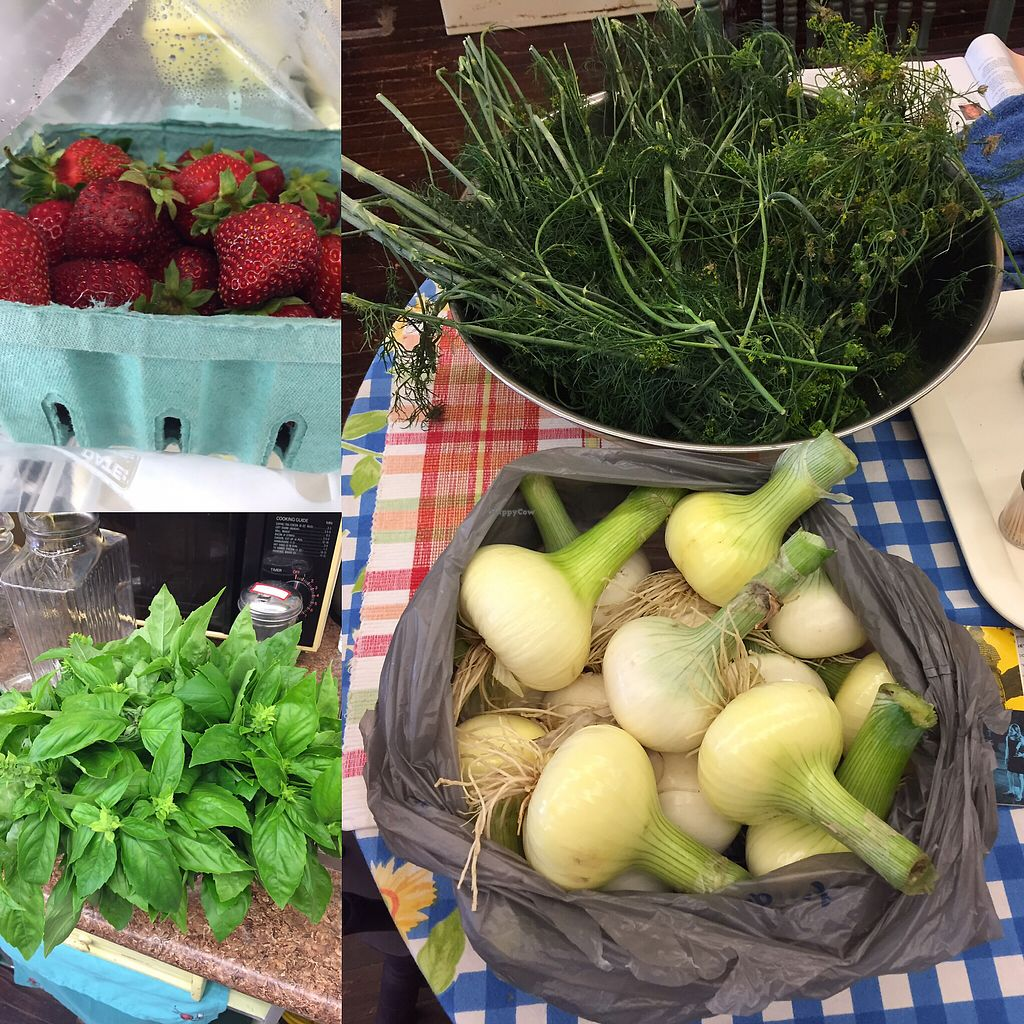 "Photo of Seasons' Eatings  by <a href=""/members/profile/seasonseatingsllc"">seasonseatingsllc</a> <br/>fresh eats from three local growers  <br/> July 5, 2017  - <a href='/contact/abuse/image/59273/276796'>Report</a>"