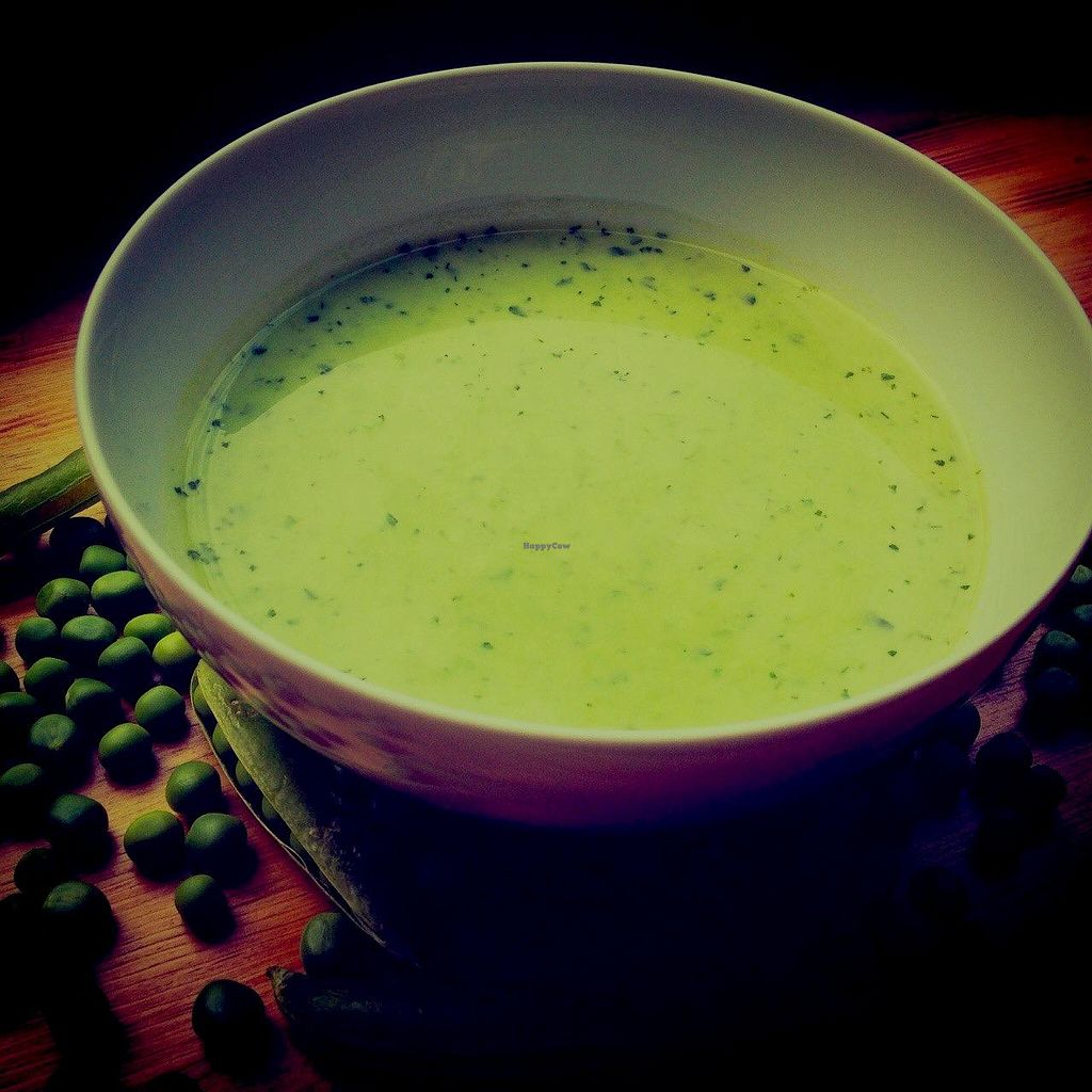 """Photo of The Goat Herder  by <a href=""""/members/profile/CorinneP"""">CorinneP</a> <br/>Pea and mint soup (gluten free, vegan, lactose free).  Delicious!! <br/> June 25, 2015  - <a href='/contact/abuse/image/59338/107244'>Report</a>"""
