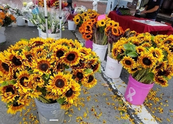 "Photo of Farmer's Market - Old Oakland  by <a href=""/members/profile/MelodyVeganJoy"">MelodyVeganJoy</a> <br/>flowers <br/> March 25, 2018  - <a href='/contact/abuse/image/5954/376105'>Report</a>"