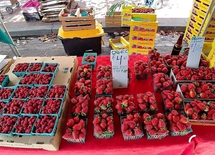 "Photo of Farmer's Market - Old Oakland  by <a href=""/members/profile/MelodyVeganJoy"">MelodyVeganJoy</a> <br/>organic  <br/> March 25, 2018  - <a href='/contact/abuse/image/5954/376106'>Report</a>"
