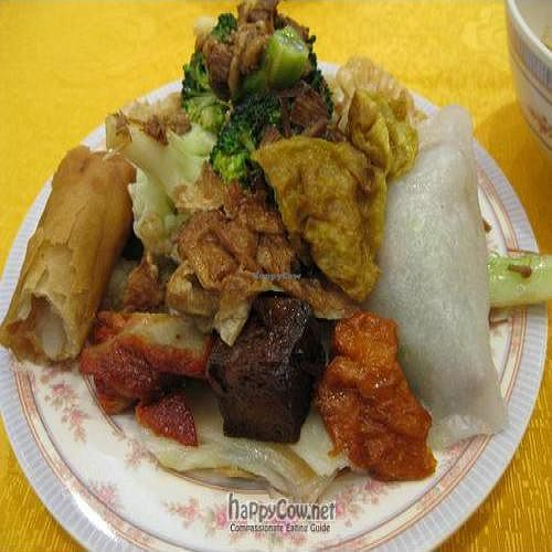 """Photo of Light Vegetarian Restaurant  by <a href=""""/members/profile/cvxmelody"""">cvxmelody</a> <br/>Plate of food from buffet <br/> January 13, 2011  - <a href='/contact/abuse/image/5956/7017'>Report</a>"""