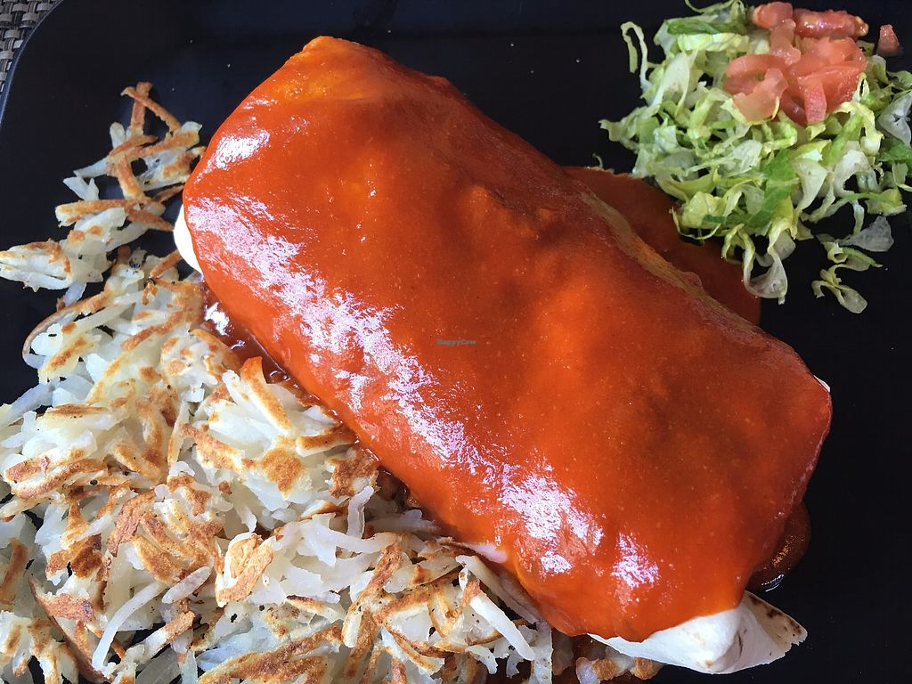 """Photo of Cafe Lush  by <a href=""""/members/profile/TraciH"""">TraciH</a> <br/>Vegan Breakfast Burrito with Red Chile and Hash Browns <br/> November 13, 2017  - <a href='/contact/abuse/image/59574/325329'>Report</a>"""