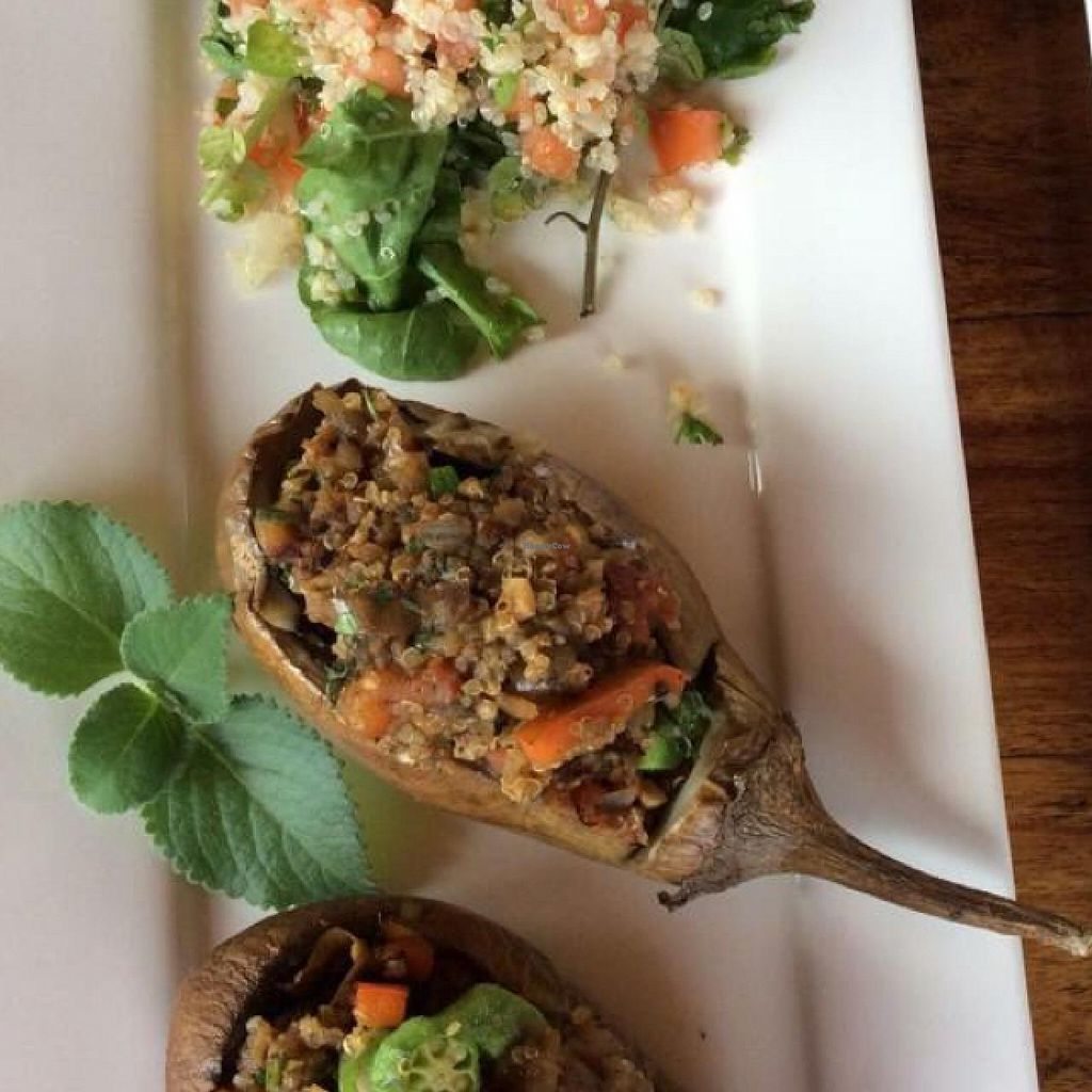 "Photo of Chile Rojo  by <a href=""/members/profile/Chile%20Rojo"">Chile Rojo</a> <br/>stuffed eggplant with quinoa and organic vegetables!  <br/> June 28, 2015  - <a href='/contact/abuse/image/59581/107532'>Report</a>"