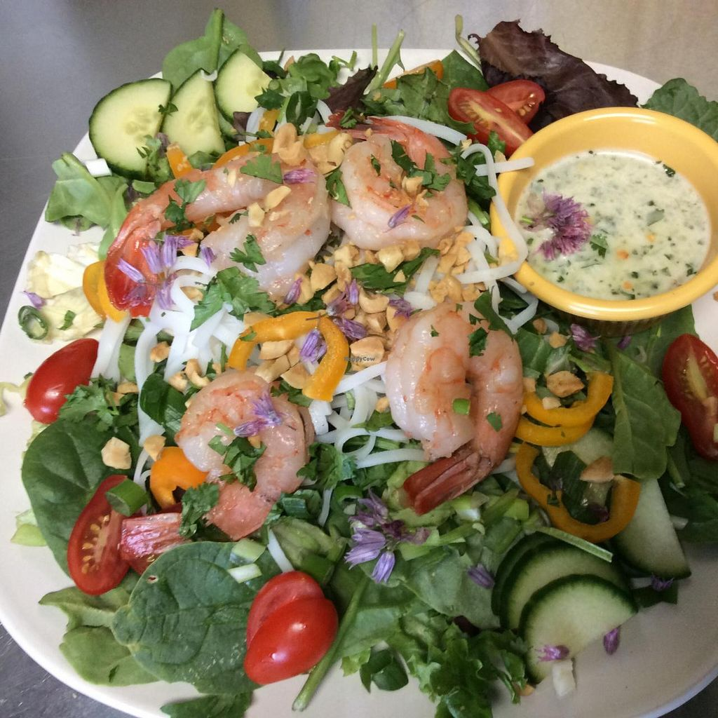 "Photo of CLOSED: The Pearl Cafe  by <a href=""/members/profile/KarenMcSwain"">KarenMcSwain</a> <br/>Thai Prawn Salad <br/> June 20, 2015  - <a href='/contact/abuse/image/59686/106659'>Report</a>"