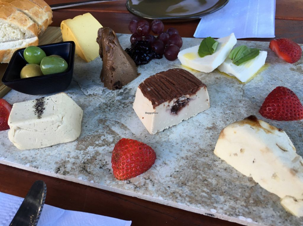 """Photo of Vtopia Cheese Shop and Deli  by <a href=""""/members/profile/Veg4Jay"""">Veg4Jay</a> <br/>Sample Tray; Gouda, Black Garlic, Mozzarella , Aged White Cheddar, and more <br/> July 11, 2016  - <a href='/contact/abuse/image/59803/159022'>Report</a>"""