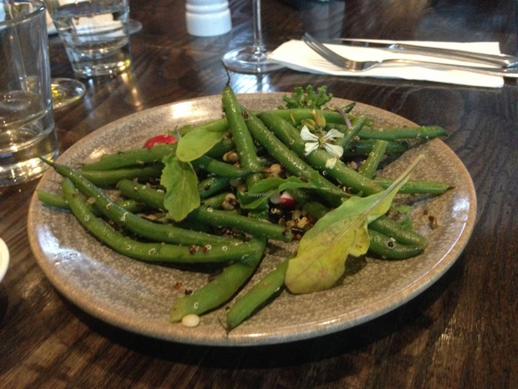 """Photo of Town Tonic  by <a href=""""/members/profile/Yolanda"""">Yolanda</a> <br/>green beans  <br/> April 26, 2016  - <a href='/contact/abuse/image/59834/146395'>Report</a>"""
