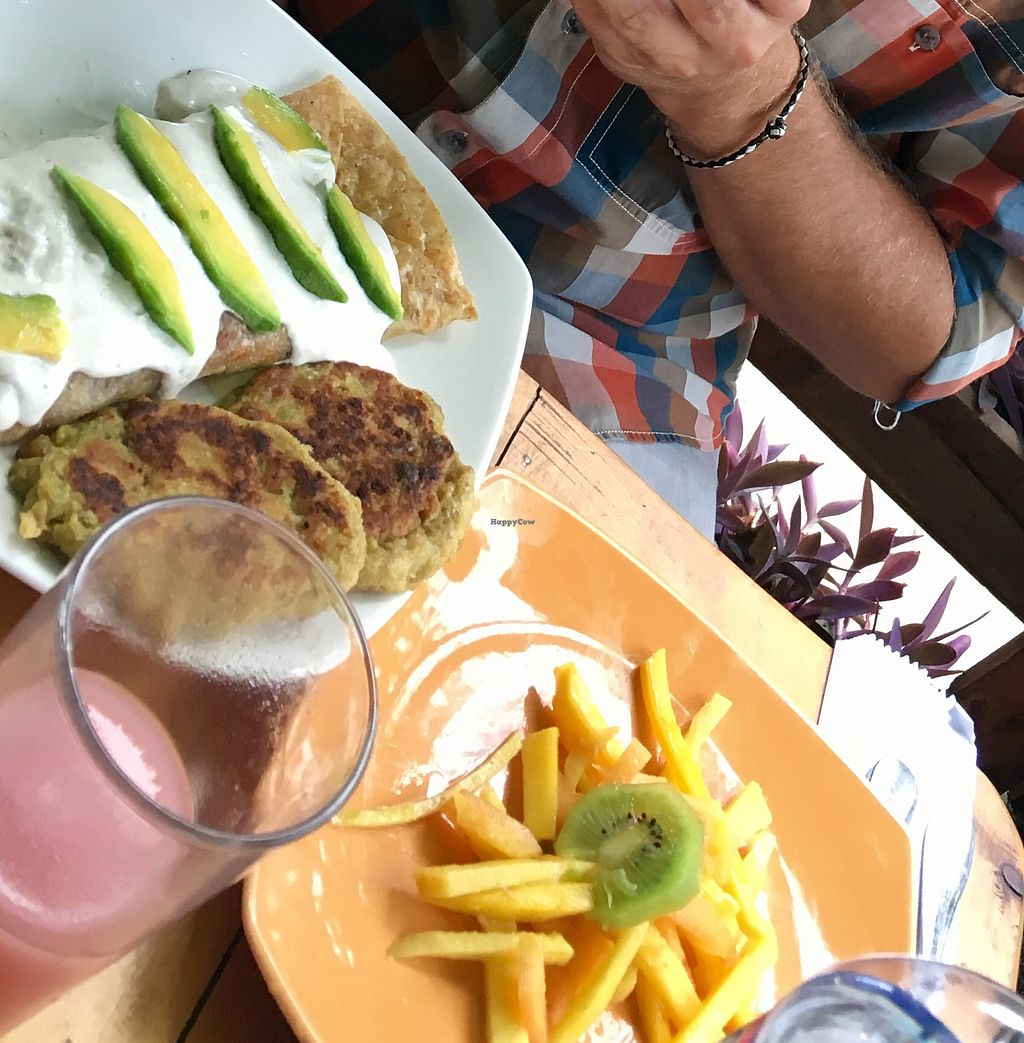 """Photo of El Vegano Andante  by <a href=""""/members/profile/oikogenia"""">oikogenia</a> <br/>fresh fruits and veggie burgers  <br/> August 16, 2017  - <a href='/contact/abuse/image/59977/293344'>Report</a>"""