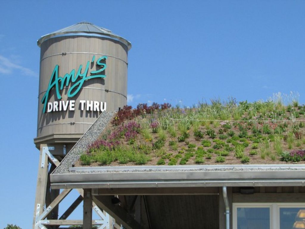 "Photo of Amy's Drive Thru  by <a href=""/members/profile/RII"">RII</a> <br/>Living roof <br/> August 3, 2015  - <a href='/contact/abuse/image/60011/112099'>Report</a>"