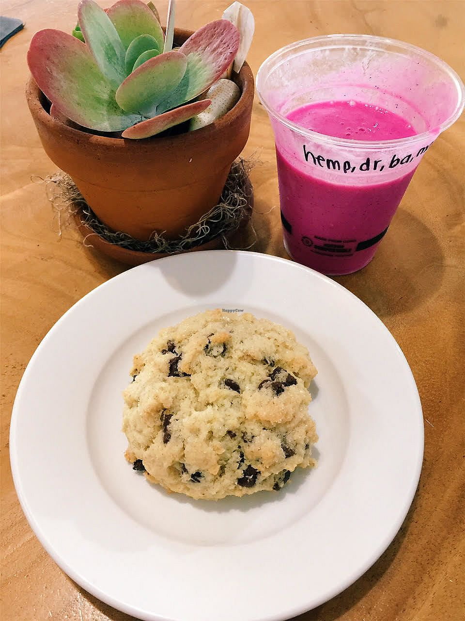 """Photo of Kaya's  by <a href=""""/members/profile/Stephaneen"""">Stephaneen</a> <br/>chocolate chip scone with smoothie <br/> March 21, 2018  - <a href='/contact/abuse/image/60021/373531'>Report</a>"""