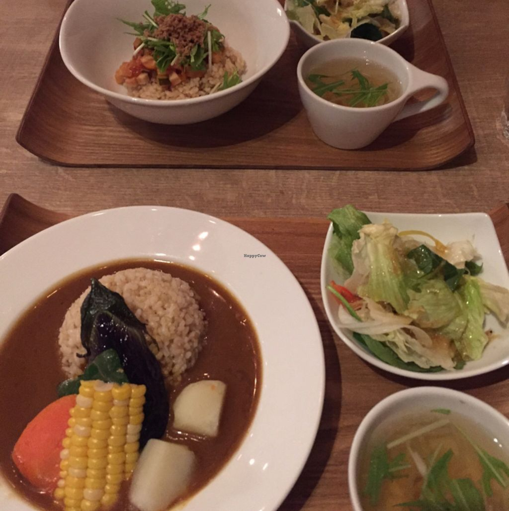 """Photo of CLOSED: Cafe the 6BT  by <a href=""""/members/profile/Tally"""">Tally</a> <br/>all vegan  <br/> February 14, 2016  - <a href='/contact/abuse/image/60065/136345'>Report</a>"""