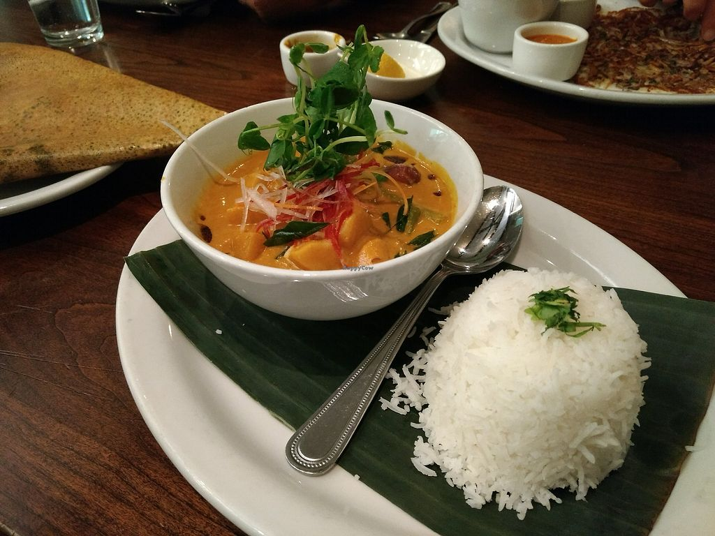 """Photo of Paper Dosa  by <a href=""""/members/profile/bduboff"""">bduboff</a> <br/>Fall Vegetable Curry  <br/> December 9, 2017  - <a href='/contact/abuse/image/60095/334016'>Report</a>"""