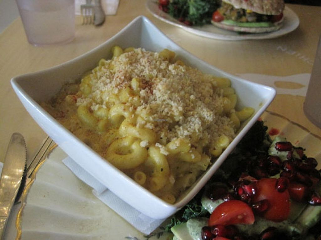"Photo of Le Doggy Cafe  by <a href=""/members/profile/Babette"">Babette</a> <br/>This is the vegan mac n cheese and it is really good. It doesn't taste like commercial vegan cheese; it may be nutritional yeast or cashew-based. It was served really hot too, which I appreciated <br/> January 31, 2016  - <a href='/contact/abuse/image/60226/134490'>Report</a>"