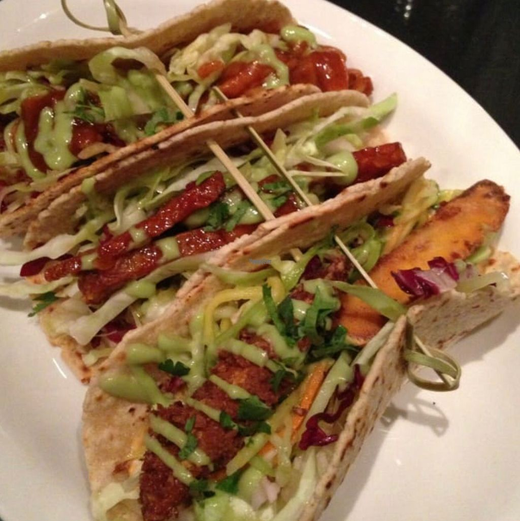 "Photo of Speakeasy  by <a href=""/members/profile/Forman"">Forman</a> <br/>veggie tacos  <br/> October 15, 2016  - <a href='/contact/abuse/image/60281/182216'>Report</a>"
