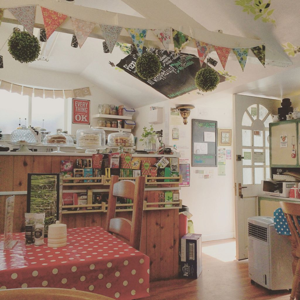 """Photo of The Garden Shed Cafe  by <a href=""""/members/profile/Veganyogidoctor"""">Veganyogidoctor</a> <br/>homely and pretty <br/> July 27, 2016  - <a href='/contact/abuse/image/60287/162622'>Report</a>"""