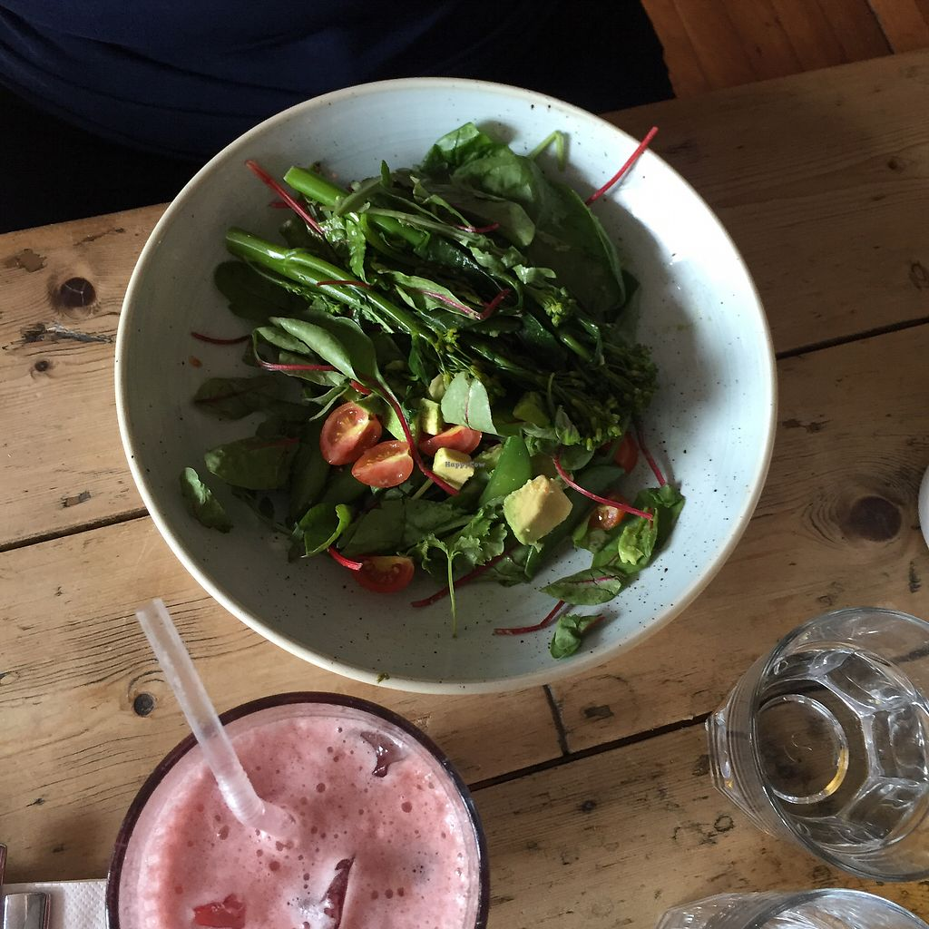 "Photo of Brasco Lounge  by <a href=""/members/profile/Tim%20van%20der%20Holst"">Tim van der Holst</a> <br/>vegan salad <br/> August 2, 2017  - <a href='/contact/abuse/image/60315/288076'>Report</a>"