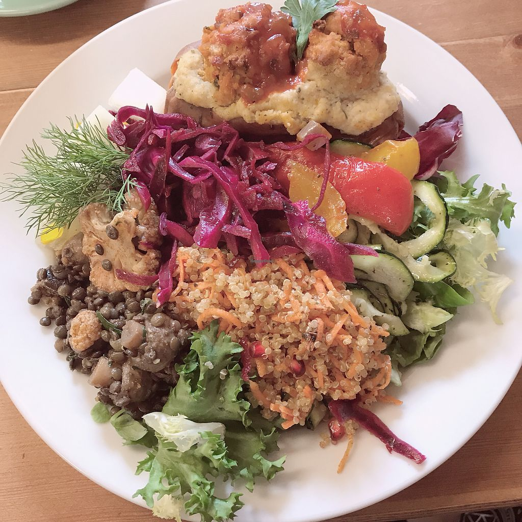 """Photo of Oh My Goodness  by <a href=""""/members/profile/Sharnie"""">Sharnie</a> <br/>Sweet potato with falafel and salsa. Full side salad too! Delicious x <br/> September 12, 2017  - <a href='/contact/abuse/image/60339/303690'>Report</a>"""