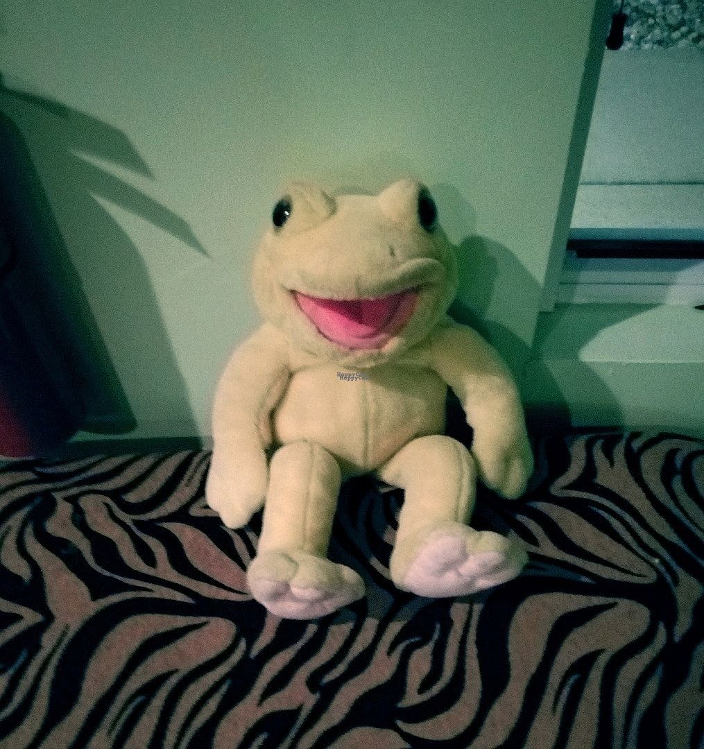 """Photo of CLOSED: Kingsway African and Carribean Cuisine  by <a href=""""/members/profile/LuluLovin"""">LuluLovin</a> <br/>Cute Frog plush near doorway <br/> October 5, 2016  - <a href='/contact/abuse/image/60416/179889'>Report</a>"""