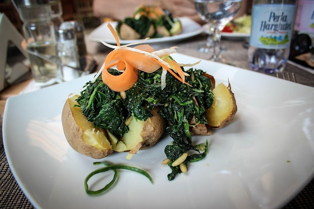 """Photo of Hotel Sighisoara  by <a href=""""/members/profile/SueClesh"""">SueClesh</a> <br/>jacket potatoes with spinach and pine nuts <br/> May 8, 2017  - <a href='/contact/abuse/image/60864/257238'>Report</a>"""