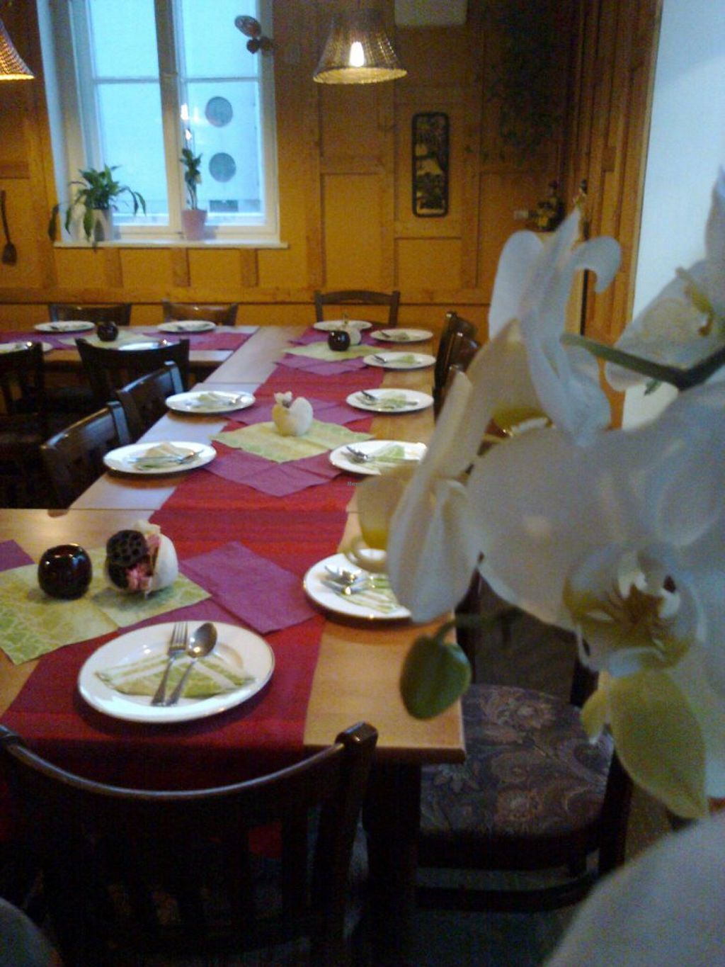 """Photo of 3 Naree Thai Cuisine  by <a href=""""/members/profile/community"""">community</a> <br/>3 Naree Thai Cuisine <br/> July 29, 2015  - <a href='/contact/abuse/image/61089/111429'>Report</a>"""