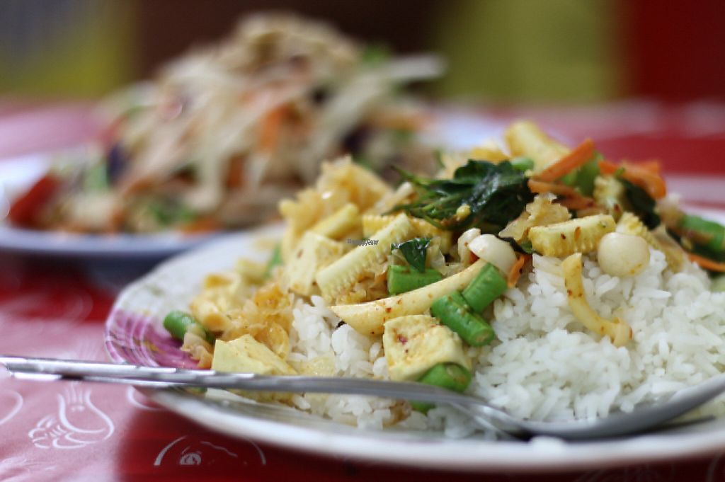 """Photo of Nian Yuen  by <a href=""""/members/profile/andreafluss"""">andreafluss</a> <br/>Yellow curry and papaya salad <br/> April 27, 2017  - <a href='/contact/abuse/image/61100/252885'>Report</a>"""
