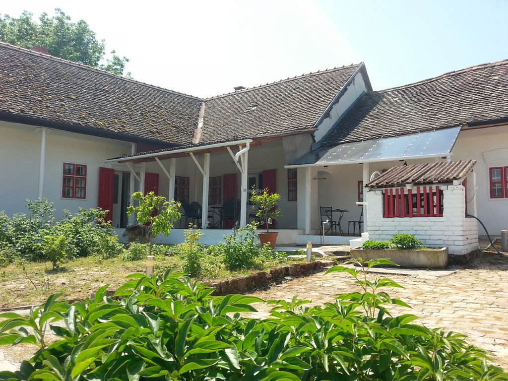 """Photo of The Vegan Guesthouse  by <a href=""""/members/profile/community"""">community</a> <br/>The Vegan Guesthouse <br/> July 27, 2015  - <a href='/contact/abuse/image/61108/111221'>Report</a>"""