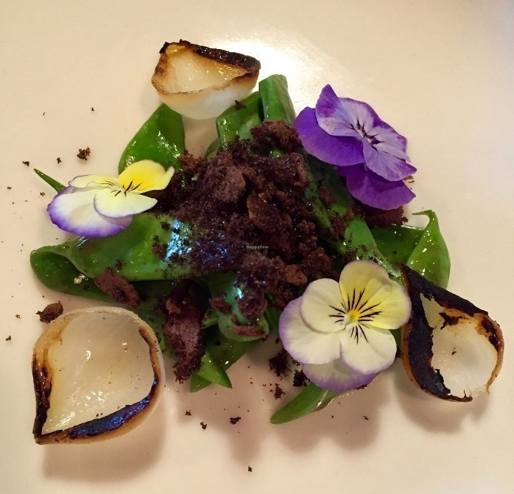 "Photo of Farm Spirit  by <a href=""/members/profile/burgerabroad"">burgerabroad</a> <br/>dragon beans and burnt onions <br/> July 13, 2016  - <a href='/contact/abuse/image/61130/218659'>Report</a>"