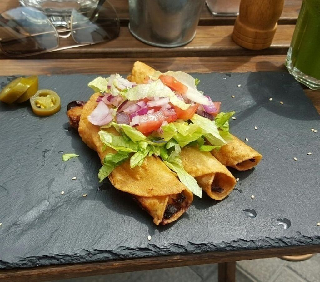 """Photo of Origen  by <a href=""""/members/profile/LuisGonzo"""">LuisGonzo</a> <br/>Best vegan tacos ever! <br/> August 20, 2016  - <a href='/contact/abuse/image/61152/170223'>Report</a>"""