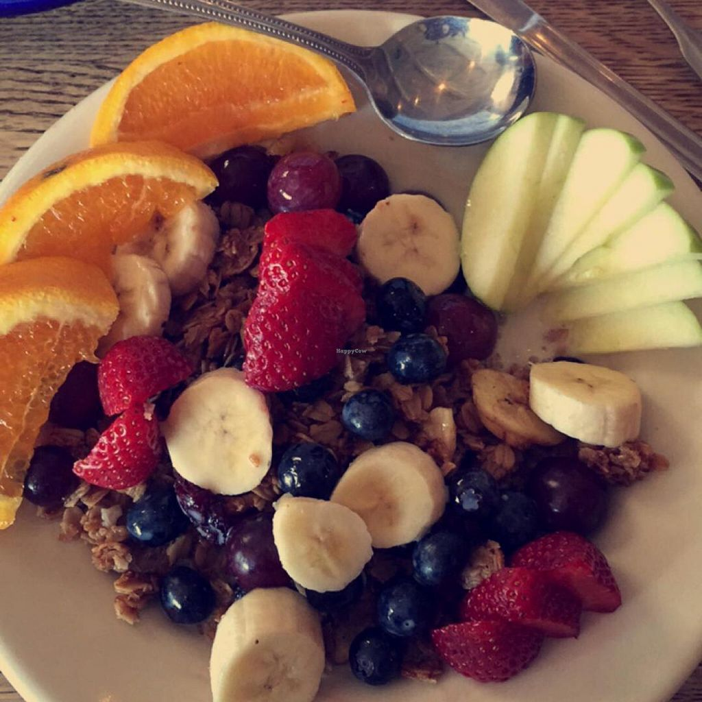 """Photo of Bottletree Bakery  by <a href=""""/members/profile/natalie_uzee"""">natalie_uzee</a> <br/>Bottletree's own granola with fruit & soy milk <br/> July 26, 2015  - <a href='/contact/abuse/image/61157/111073'>Report</a>"""
