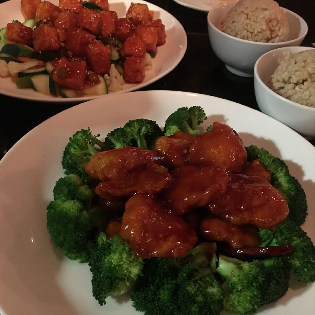"""Photo of Zhu's Pan-Asian Vegan Cuisine  by <a href=""""/members/profile/NathanOriol"""">NathanOriol</a> <br/>General Tso's and Sesame Tofu <br/> December 12, 2016  - <a href='/contact/abuse/image/61169/200473'>Report</a>"""
