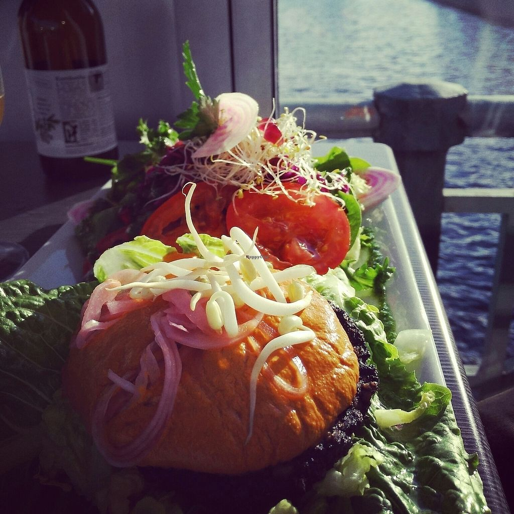 """Photo of Open New Doors  by <a href=""""/members/profile/Logge"""">Logge</a> <br/>raw vegan burger <br/> July 8, 2017  - <a href='/contact/abuse/image/61245/277948'>Report</a>"""