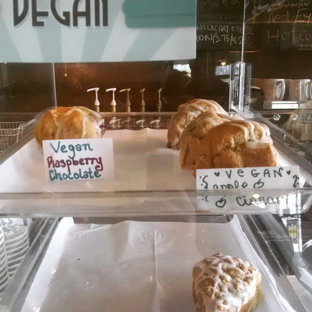 """Photo of Daily Planet Coffee   by <a href=""""/members/profile/ToriKriegel"""">ToriKriegel</a> <br/>Vegan Scones <br/> August 1, 2015  - <a href='/contact/abuse/image/61460/111918'>Report</a>"""
