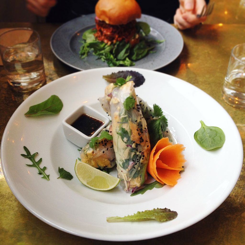 """Photo of CLOSED: Green Peas - Fridhemsplan  by <a href=""""/members/profile/treemelody"""">treemelody</a> <br/>Spring rolls and burger with pulled jackfruit.  <br/> April 26, 2016  - <a href='/contact/abuse/image/61485/146364'>Report</a>"""