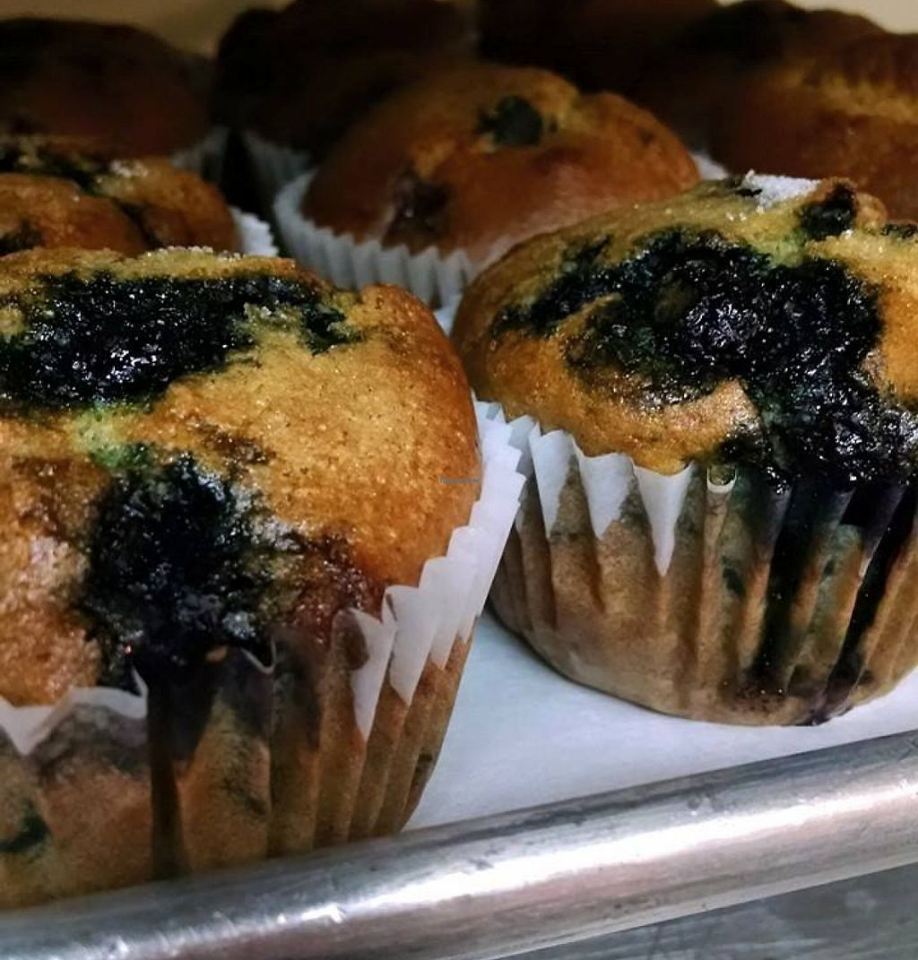"""Photo of Annie May's Sweet Cafe  by <a href=""""/members/profile/community"""">community</a> <br/>blueberry muffins  <br/> August 24, 2015  - <a href='/contact/abuse/image/61502/200755'>Report</a>"""